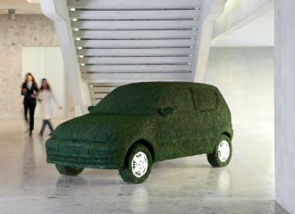 Automobile covered in grass